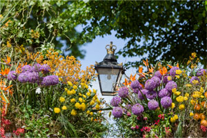 RHS Chelsea Flower Show and Kew Gardens - Additional Tour