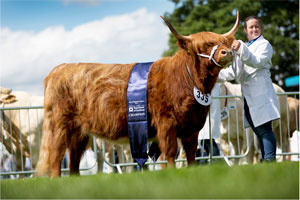 The Royal Highland Show 2021